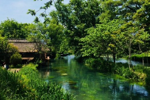 1-DAY MATSUMOTO CASTLE & FOOD EXPERIENCE TOUR