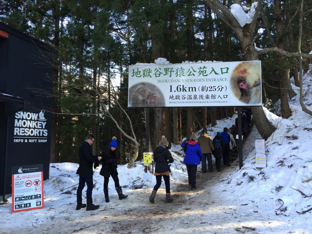 14:00 Arrive nearby the Snow Monkey Park area.