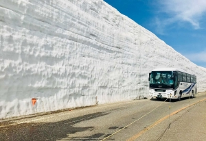 Tour to the Snow Wall