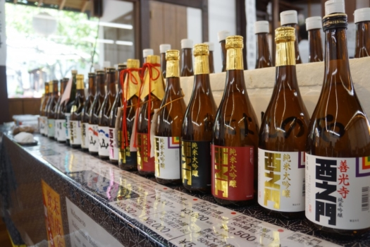 Nagano 1-Day Tour: Snow Monkeys, Zenko-ji Temple & Sake Tasting