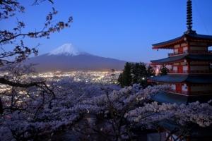 Nagano to Tokyo Day Tour Mt Fuji