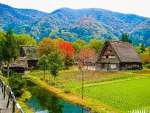 14-Day Central Honshu Tour from/to Tokyo: Countryside Culture, Tradition, and Scenery