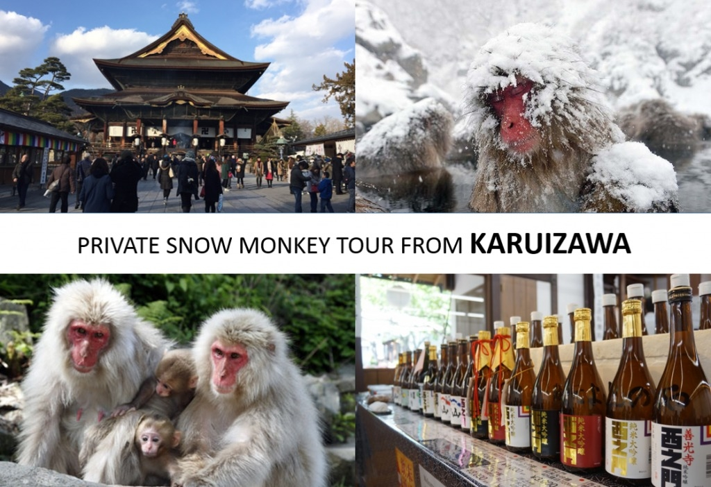 From/To Karuizawa: Snow Monkey Private Tour
