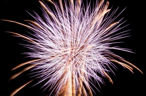 Aug 14th Only: Azumino Fireworks Festival & Snow Monkeys