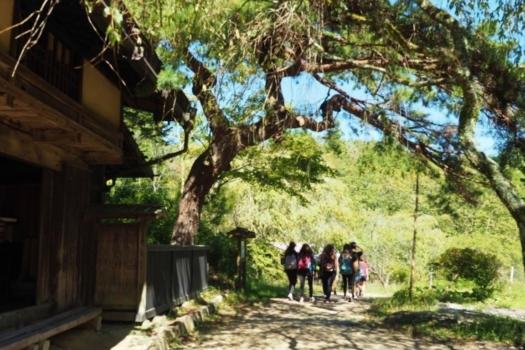 From/To Nagano 3-day Tour: Snow Monkeys & Historic Nakasendo