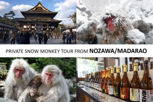 From/To Nozawa/Madarao: Snow Monkey Private Tour