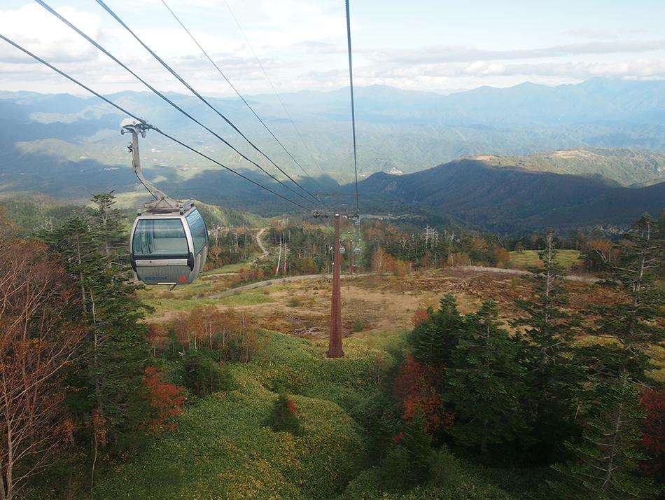 2 days tour from Nagano/Matsumoto to Takayama through the Nakasendo Kiso Valley