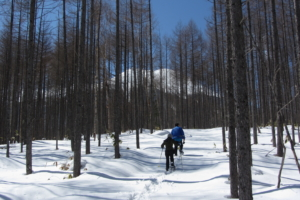 [Winter only] 2 days from Takayama to Matsumoto/Nagano through the Nakasendo Kiso Valley